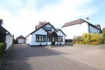 Detached Bungalow for sale in Lichfield Road, Hopwas