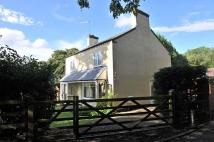 Detached house for sale in Dale Hill, Blackwell...