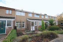 3 bed Terraced home for sale in WILLOW CLOSE...