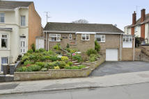 4 bedroom Detached Bungalow in Rushton Road, Rothwell...