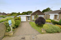 3 bed Detached Bungalow in Fern Dale Close...