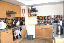 7 bedroom Terraced home to rent in Totland Road, BN2