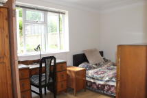 semi detached house to rent in Plymouth Avenue...