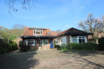 3 bed Detached property to rent in THUNDERSLEY