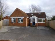 Detached Bungalow in Pilgrims Court...