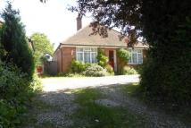 Bungalow for sale in Arthur Road, Farnham, GU9