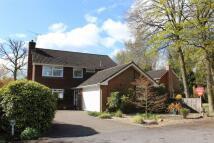 Detached house in Greystead Park, Farnham...