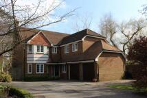 5 bedroom Detached house in Queen Annes Gate...