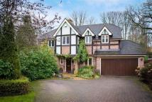 Detached property in Tudor Hill...