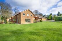 4 bed Detached house for sale in Beech Gate...
