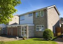 Detached house for sale in The Curlews...