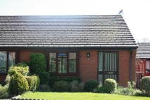 Semi-Detached Bungalow to rent in ROMSEY