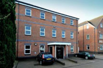 property to rent in 11 Elm Court,