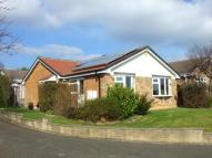 3 bedroom Detached Bungalow in Lambourn Drive, Allestree