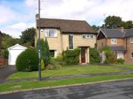 Detached house to rent in Short Avenue, Allestree