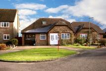 Detached Bungalow for sale in Field Walk, Smallfield...