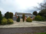 Detached Bungalow in The Beeches ...