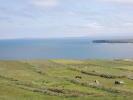 Mayo Farm Land for sale