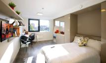 1 bed Studio flat in Terminus Terrace...