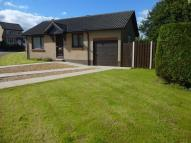 2 bed Detached Bungalow to rent in Pen Nook Gardens, Deepcar