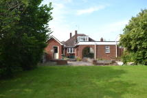 Detached Bungalow for sale in Norton Green Lane...