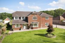 Detached property in The New Forest National...