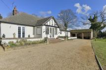 7 bedroom Detached Bungalow for sale in Ixworth Road...