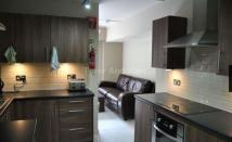 ENSUITE SINGLE STUDENT/ PROFESSIONAL ROOMS IN CITY CENTRE House Share