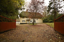 Character Property in Buntingford...