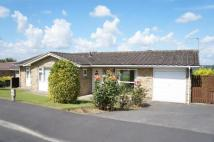 3 bedroom Bungalow for sale in Walton Park, Pannal...
