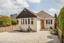 3 bedroom Detached Bungalow in Chelmsford Road...