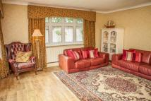 Detached Bungalow for sale in Close to Shenfield...