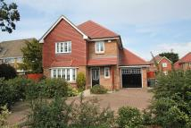 Detached property to rent in Green Lane, Chertsey...