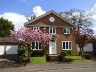 property to rent in Rosslyn Park, Weybridge...