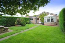 Detached Bungalow in Sunnyfield, Rhayader
