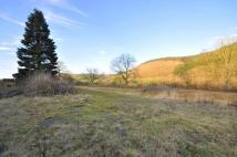 Abbeycwmhir Plot for sale