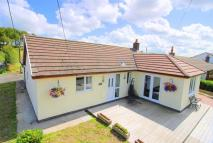 Detached Bungalow for sale in Pant-Y-Dwr, Rhayader