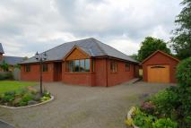Detached Bungalow for sale in Curlews Meadow...