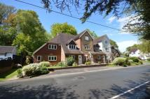 Detached house to rent in Arford Road, Headley...