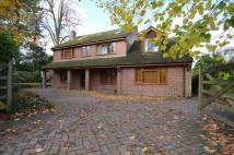 6 bedroom Detached property in Carlton Road...