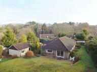 Bungalow to rent in Long Cross Hill, Headley