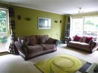 Flat to rent in Robinia Lodge...