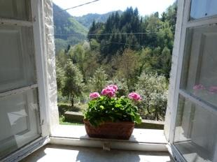 View and Window