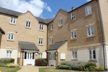 2 bed Apartment in Dainty Grove...