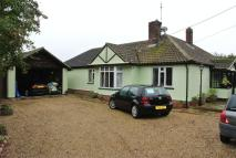 Detached Bungalow for sale in Thorpe Road, Weeley