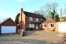 Detached house for sale in Daundy Close, Ipswich...