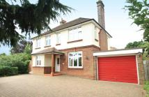 Detached home in Belstead Road, Ipswich...