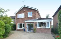 Detached property for sale in Ashmere Grove, Ipswich...