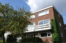 Ground Flat for sale in Park North, Ipswich...