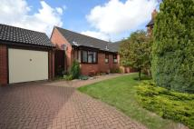 Detached Bungalow for sale in Foxglove Close...